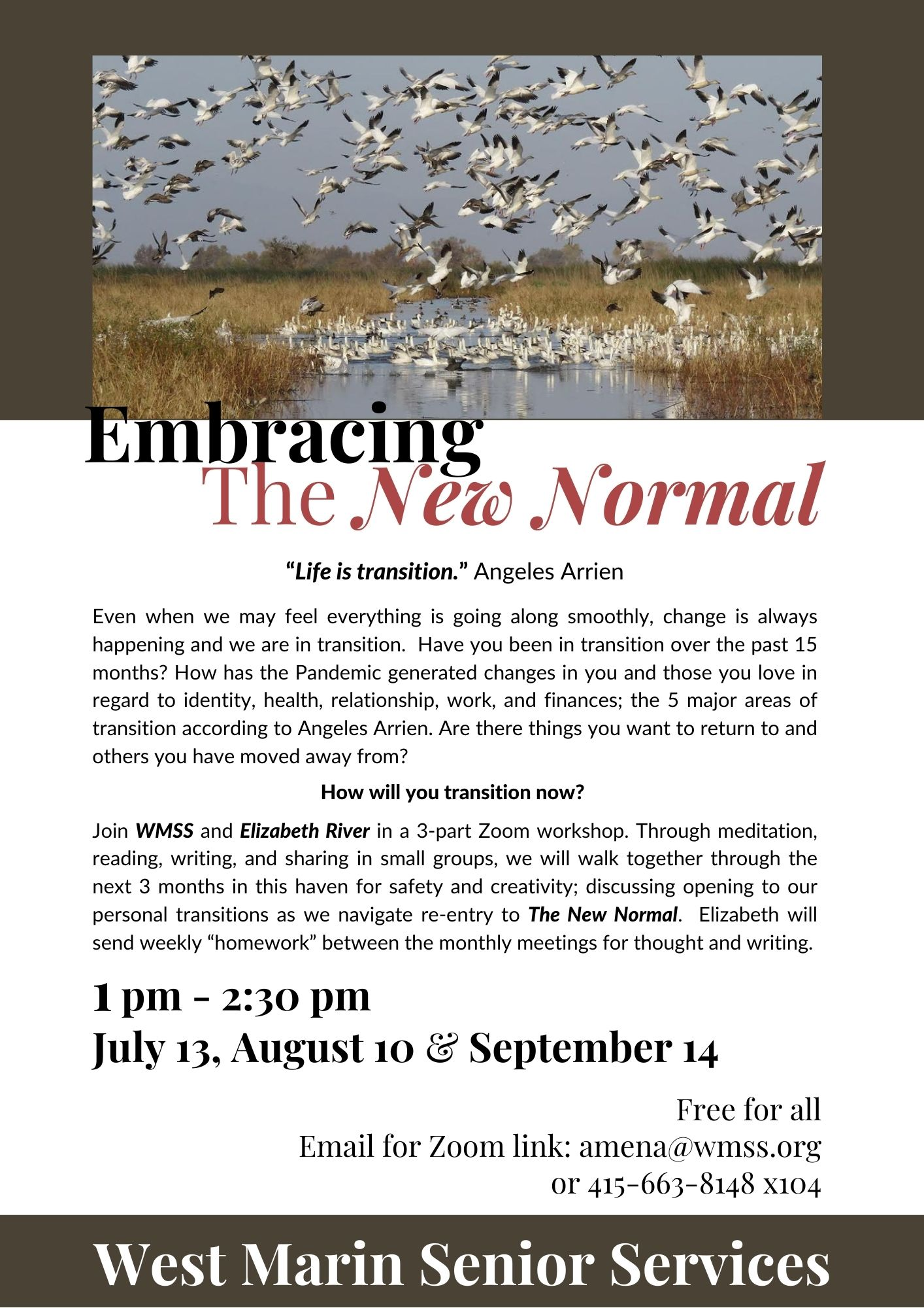 A new normal workshop flier monthly workshop.